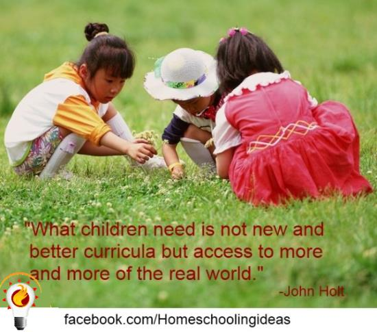 benefits-of-homeschooling-john-holt-quote